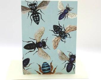 4-pack Australian native bee cards