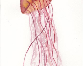 Red orange jellyfish watercolor (not a print) painting. ocean sea. colorful.