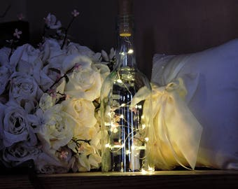 Wine Bottle LED lights w/Cork