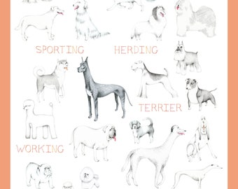 Home Decor Wall Art- Illustrated Dog Print