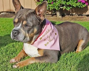 Personalized Dog Bandana, Arrow Birthday Boy or Birthday Girl Dog Bandana, customize with dog name