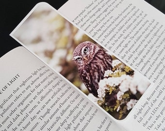 Nature Owl Animal Bookmark