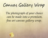Canvas gallery wrap, canvas wall art, photo print option, wall art option, rustic home decor, fine art photography