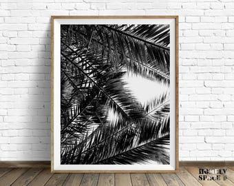 Palm leaf print Palm tree print Tropical tree art Black and white art print Tropical tree print photo Digital palm trees art Tropical prints