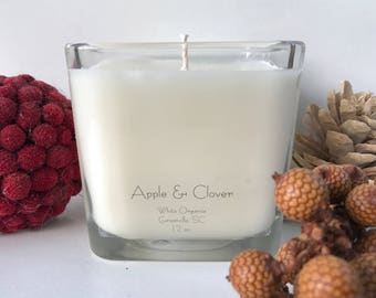 Apple & Clover, Christmas, Holiday, 100% All Natural Soybean Candle, 12 oz., Eco Friendly, Clean Burning, No Color or Dyes, MADE IN USA