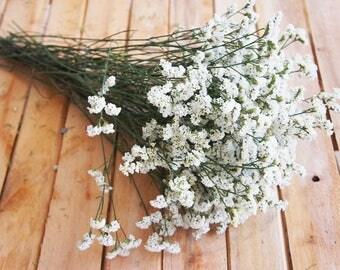 dried white limonium, wedding bouquet, dried flower supply, statice, rustic wedding decor, flower arrangement, home decoration