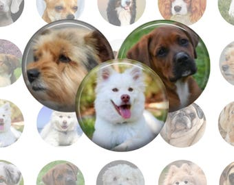 Dogs Collage Sheet, 1 Inch Circles, 20 Images, Printable Download