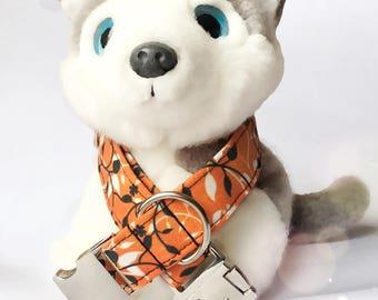 Dog Collar C1708