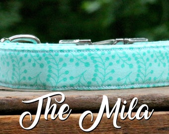 Dog Collar Girly, Girl Dog Collar, Modern Dog Collar, Light Blue Dog Collar, Trendy Dog Collar, Fashion Dog Collar, Girl Collar, Dog Collar