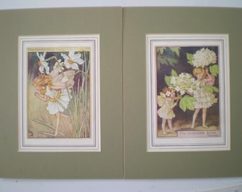 Vintage Prints : Cicely Mary Barker - Flower Fairies - 'The Narcissus Fairy' and 'The Guelder Rose Fairies' - Mounted