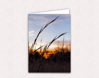 Sunrise in Wheat Field 5x7 Photo Note Card Blank inside with envelopes North Carolina Photo Greeting Card