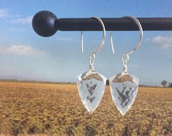 Crystal Shield Earrings