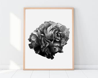 Flower Print, Art, Floral Print, Floral Art, Floral Decor, Home Decor, Modern Decor, Gallery Wall Prints, Printable Women Gift, Downloadable