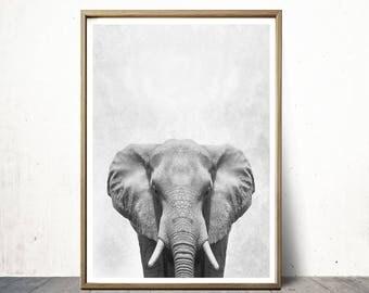 Elephant Print Elephant Poster Wall Art Print Animal Print Elephant Art