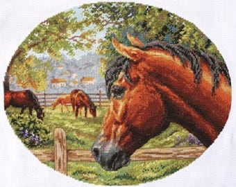 Counted Cross Stitch Kit Horse