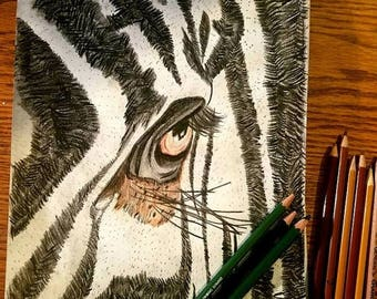 SALE Original Highly Detailed Realism Graphite Colored Pencil Sketch ZEBRA EYE Close Up Tribal African Africa Zoo Artist Art By Scott D Van