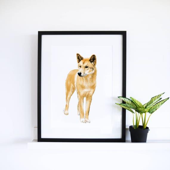 The Dingo // White Collection