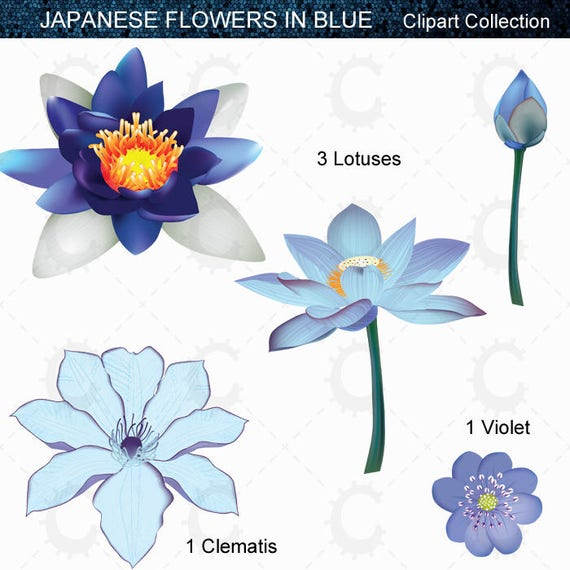 Blue Japanese Flower Clipart Collection Sold By CraftedInDigital This Is A Digital File
