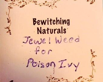 Jewelweed infusion for poison ivy