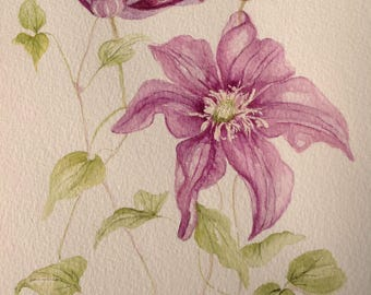 Watercolour Painting PURPLE CLEMATIS Watercolour Flowers, Wall Art, Kitchen Wall Art, Flower Painting, Purple Flowers, Clematis Painting