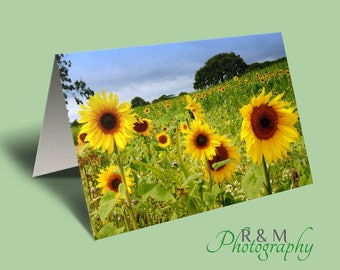 sunflowers card - sunflowers - floral greeting card - any occasion card - nature card - sunflower field - personalised card