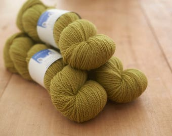 Doulton Border Leicester Appleton Wiske worsted spun yarn in DK.