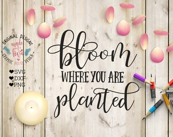 Spring svg, spring cutting File, Bloom Where You Are Planted printable, spring printable, girlie printable, bloom svg, bloom printable