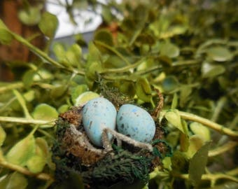 20% OFF STOREWIDE Fairy Garden Miniature Acorn Cap Robin's Egg and Nest, Tiny Nest with Speckled Eggs, Fairy Garden Accessory for Terrariums