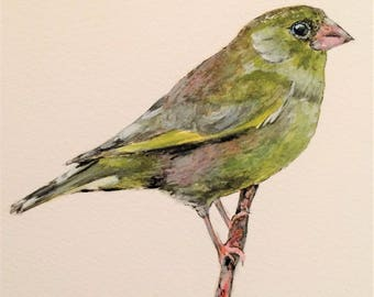"Greenfinch 12"" x 10"" Original watercolour painting"