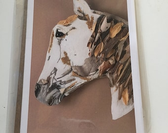Horse Note Card Set