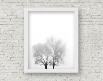 Foggy Tree Landscape Print. Moody Landscape Photography. Tree Print. Black White Decor. Foggy Art print. Rural Print. Misty Landscape