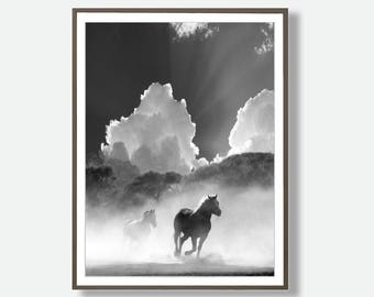 Printable Horse, Black and White Printable, Printable Horse Wall Art, Wild Horse Photo, Printable animal, Equestrian, Printable Art, Digital