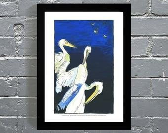 London Art Print - Pelicans at St James's Park
