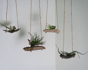 Air Plant Swing | Air plant holder | Air plant hanger | Room Decor | Accent plant |
