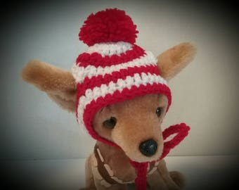 Small Dog hat + Free Shipping