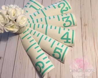 DIY Children's Growth Ruler/Growth Ruler Decals/Make My Own Growth Chart Kit/Growth Ruler Stickers/Vinyl Growth Chart DIY