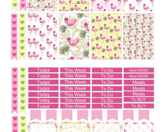 FLAMIN FLAMINGOS  Weekly Planner Sticker Kit/Printable's Happy Planner Classic Instant Download /