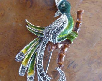 Vintage 1950s Enamel & Marcasite Exotic Bird Brooch By Hollywood