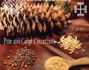 Russian Pine & Cedar Collection 100 grams / wild Crack-wall Russian pine pollen / wild Russian Cedar Nuts / wildc Russian Pine Nuts
