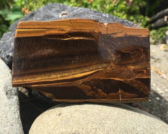 Large Tigers Eye Slap