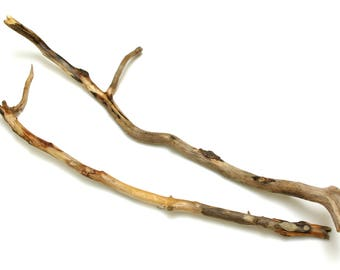 30-32 Inch Driftwood Branch - 2 pcs Long Driftwood for Crafts, Driftwood Art Piece, Wall Hanging Tapestry, Driftwood Branch, Beach Finds #81