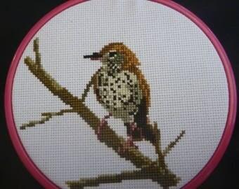 Wood Thrush Cross Stitch Pattern
