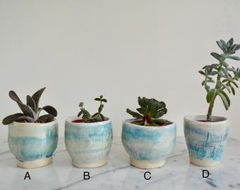 Mini Plant Pot, Mini Planter, tea cup, plant lover gift, sold separately