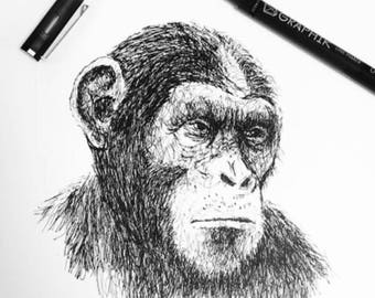 "Original Caesar  ""2 August 2017"" Hand drawn artwork by Rachel Rose McAndrew"