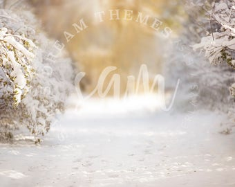 Winter Creamy Digital backdrop, digital background, Dreamy background, Christmas background, Christmas backdrop, Snow backdrop background