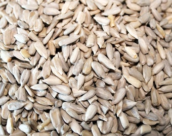 Activated Sunflower Kernels 375g Pouch - Raw, organic