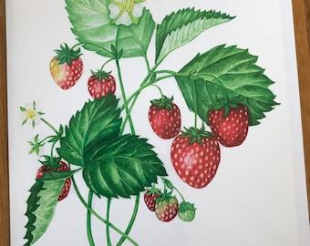 Strawberries Greeting Card (blank inside)