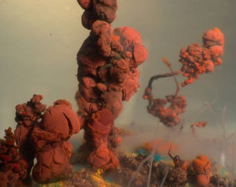 Chemical Mineralis Mundi III, chemical garden, chemistry, macro photo