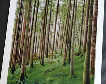 Forest In Argyllshire signed fine art giclee print. Woodland wall art, decor accessory.