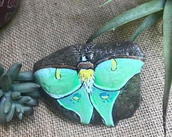 Luna Moth Painted Rock - Painted Luna Moth Stone